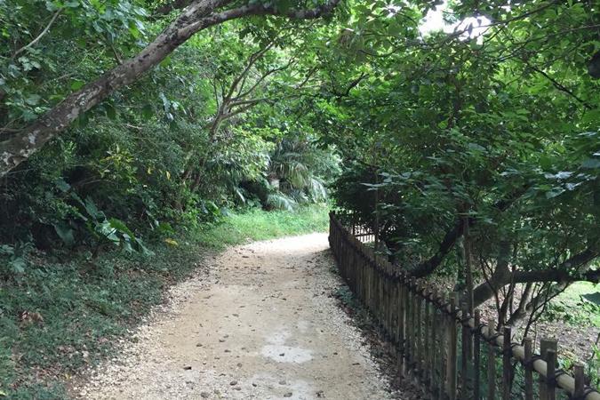御嶽の山道